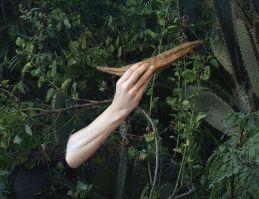 Luisa Bevilacqua - Nocturnes: Contes des origines